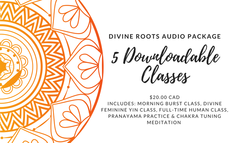 Divine Roots Audio Package